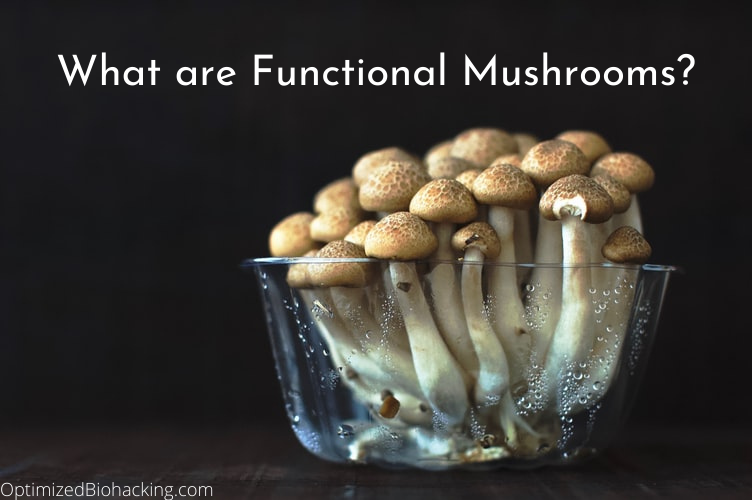 Functional Mushrooms